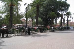 conciergerie de marie marrakech